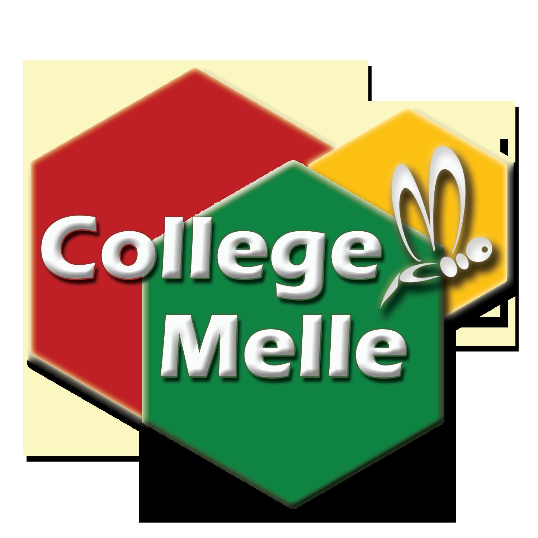 Logo-College-bijenraten-laatste-versie-goede-kleuren